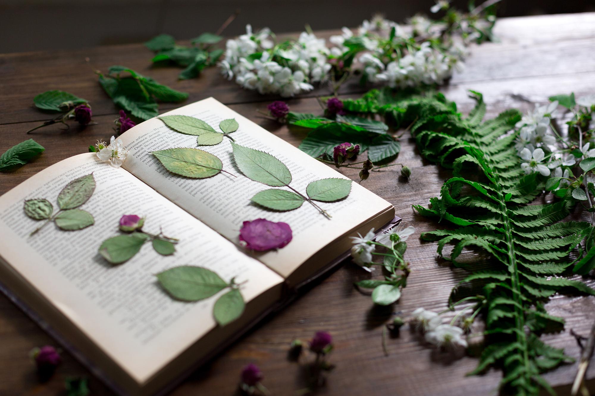 オーダーメイドの花束・結婚式のウェディングブーケのことならFlower Room(フラワールーム)|神戸・芦屋・西宮・宝塚
